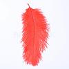 Ostrich Feather Costume AccessoriesX-FIND-R036-A-12-1