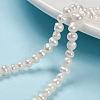 Natural Cultured Freshwater Pearl BeadsPEAR-D049-1-1