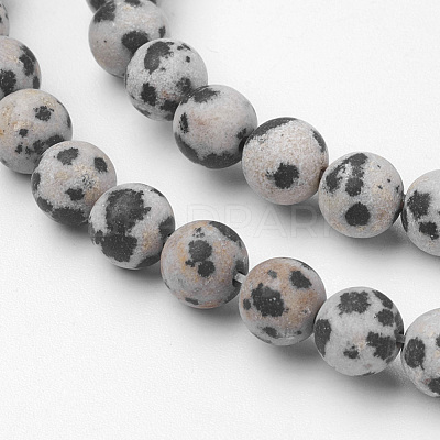 Natural Dalmatian Jasper Bead Strands G-G735-68F-6mm-1