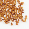 Glass Seed BeadsSEED-A004-3mm-13-1